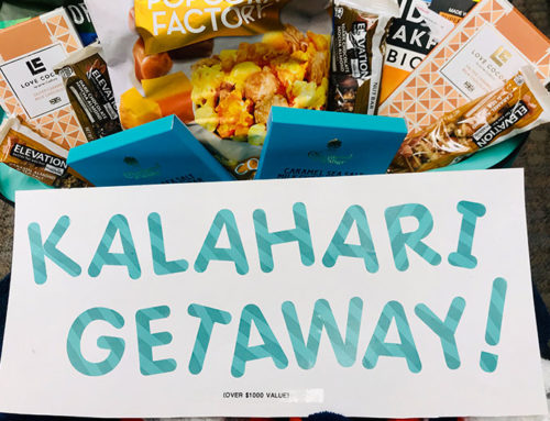 Kalahari Getaway Package to Support A Room to Heal